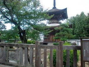 徳川家(松平家)の聖地 大樹寺